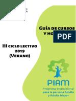 Guía PIAM III ciclo 2019.pdf