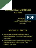 1. morfologi dan struktur eksternal dan internal sel bakteri