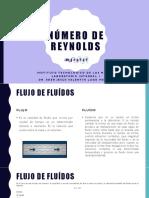 1.2_Numero_de_reynolds