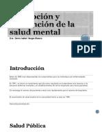 Tema 3 Promoción y Prevención de la salud mental