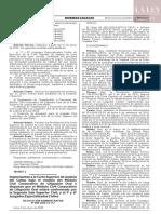 Res. Adm. N° 008-2020-CE-PJ