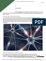 Los síntomas de la esclerosis dependen de la zona que esté afectada_.pdf