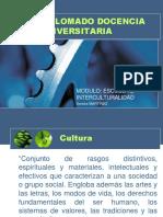 DIPLOMADO DOCENCIA UNIVERSITARIA (2)