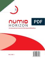 NUMIDHORIZON JOURNAL VOL2 NO1.pdf