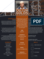 callum golds creative cv