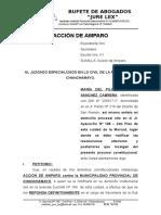 Accion de Amparo - Pilar