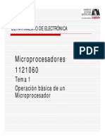 tema1N.pdf