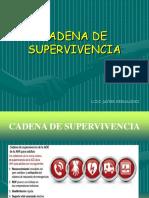 1 CADENA DE supervivencia 1.ppt
