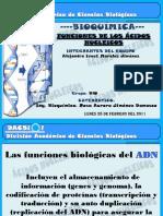 84999005-bioquimica.pptx