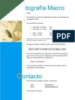 IngresoMacro.pdf