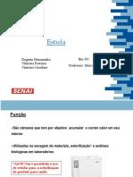 Estufa.pptx
