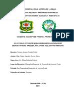 CARATULA DE CUADERNO DE CAMPO DE PPP - RANDY.docx