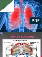 SEMIOLOGIA TORAX Y PULMONES