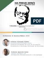 PSICANÁLISE CLÍNICA - TURMA FREUD - I - INSTITUTO GAIO - PROF. ARAÚJO