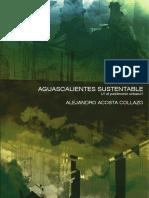 ve_aguascalientes_sustentable