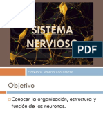 Unidad I_Sistema nervioso_Neurona_Reflejo_ Impulso Nervioso