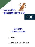 3resumen-anexos-cutaneos-duros (1)