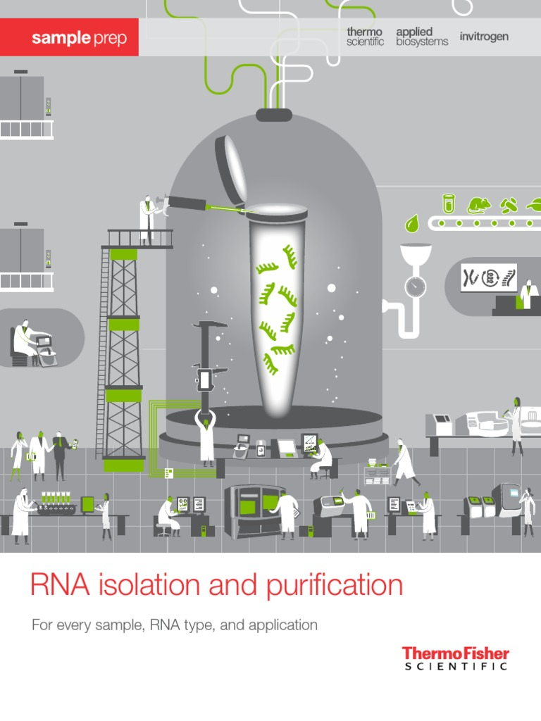 Rna Isolation Purification Brochure Real Time Polymerase Chain Reaction 16 S Ribosomal Rna