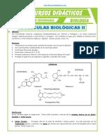 Moléculas-Biológicas-2-para-Quinto-de-Secundaria
