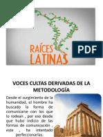 raices latinas