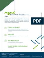 agile-business-analyst.pdf