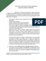 Pauta Tercera Evaluación Práctica Poblaciones Especiales y Deporte Adaptado.docx