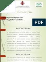 PORCINOS (1) (1).pptx