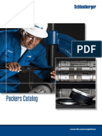 296626585-SLB-Packer-Catalog-pdf.pdf