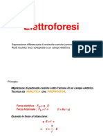 8-Elettroforesi (1)