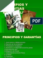 PRINCIPIOS Y GARANTIAS PROCESALES