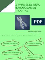TÉCNICAS PARA EL ESTUDIO DE CROMOSOMAS EN PLANTAS