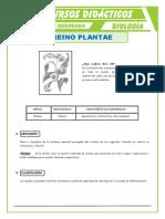 El-Reino-Plantae-para-Quinto-de-Secundaria