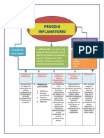 mapa  conceptual proceso inflamatorio