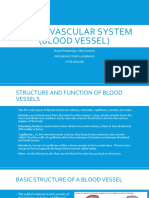 Cardiovascular system (The Blood Vessel)