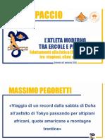 MPegoretti-Crippa.pdf