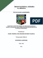 t007368.pdf