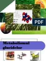Metabolismul glucidelor.ppt