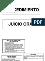PROCEDIMIENTO JUICIO ORAL.docx
