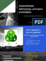 Sostenibilidad_ Definiciones, Principios y Conceptos