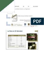 Leyes-Ambientales-de-El-Salvador