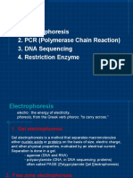 Electrophoresis, PCR, DNA Sequencing, Restrictin enzyme