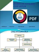 Organigrama TERMINADO.pptx