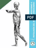 Endocrino_2_Patologia 2017.pdf