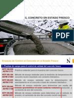 S10 - AVD Concreto Estado Fresco (2019-1)