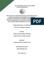 INFO TESIS.pdf