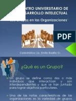 Los Grupos en la Organización