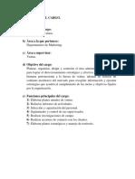 DESCRIPCIÓN Y ANALISIS DEL CARGO.docx