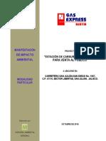 ejemplo_de_MIA-P_EST._CARB..pdf