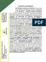 contrato prestacion de servicios german.docx