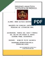 DIAGRAMA TEORIA DEL CASO.docx